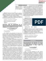 Protocolo pnp