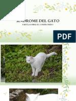 SINDROME DEL GATO.pptx