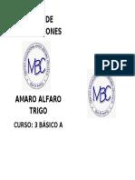 LIBRETA AMARO.docx