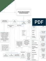 Cuadro Conceptual - Estructura Curricular Del Programa I.Q. Corte1