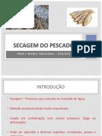 Aula_SECAGEM DO PESCADO_2019