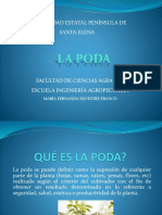FER 3.pptx