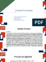 2GarantiasProcesales.pptx