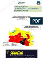 Strategi Nasional  PP Anemia TTD Rematri.ppt