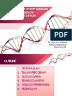 Isolasi DNA - Mega