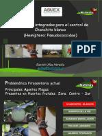 Atlas Temático de Zoología Invertebrados-FREELIBROS.ORG