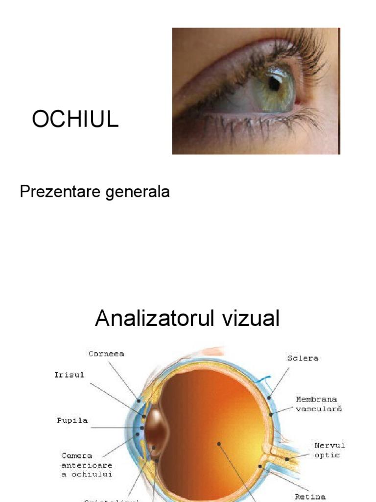 """Recuperarea acuității vizuale, 5 thoughts on """"Program de recuperare a acuității vizuale"""""""