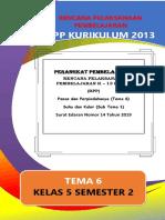 RPP_Kelas_5_TEMA_6_ST_1_lembar_dicariguru.com