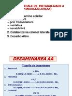 Căile individuale (speciale) ale metab AA