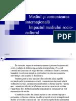 73452655-Mediul-şi-comunicarea-internaţională