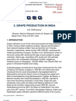 Grape Production in India