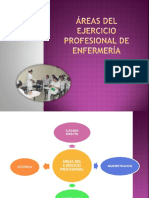 Áreas del ejercicio profesional de enfermería