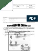 REPRODUCCION EN PLANTAS GUIA 7