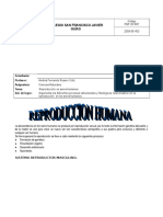 REPRODUCCION  HUMANA GUIA 9