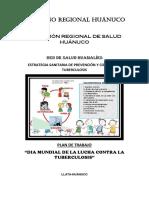 PLAN DIA DE LA TBC HUAMALIES.docx