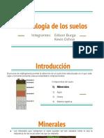 Mineralogia del suelo