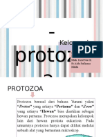 protozoa-1