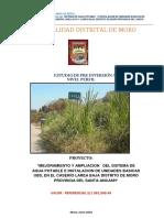 PIP-LAREA REFORMULADO.pdf