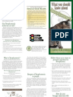 Toxoplasmosis brochure