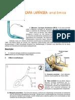 Manual MLA Tela