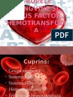 studiu anatomia2.pptx
