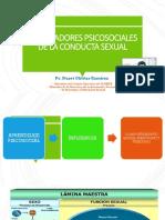 MOLDEADORES PSICOSOCIALES DE LA CONDUCTA SEXUAL.pptx