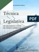 02. TECNICA LEGISLATIVA INTRODUCCIÓN