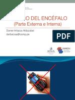 4ta Teoría de neuroanatomía. Tronco cerebral..pdf