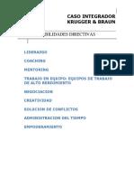 KRUGGER Y BRAUN CASO INTEGRADOR_2018 (1)