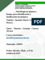 Amanda_Caro_Unidad_3_Morfología de Plantas y Hongos Para Identificación y Clasificación Taxonómica