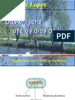 Origens-2007
