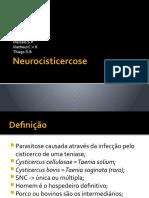 Neurocisticercose