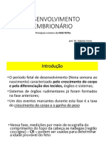 DESENVOLVIMENTO EMBRIONÁRIO FASE FETAL