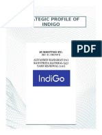 STRATEGIC PROFILE OF INDIGO