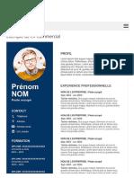 Exemple de CV Commercial Gratuit à Télécharger   Modèle CV Word.pdf