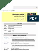 Exemple de CV Simple à Télécharger Gratuit | Modèles de CV.pdf
