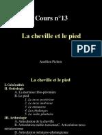 L1-S2-CM13-Cheville-Pied-2011