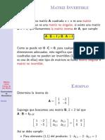algebra-lineal-matriz-inversa.pdf
