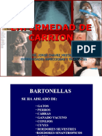 ENF DE CARRION