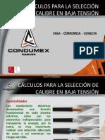 CALCULOS_PARA_LA_SELECCION_DE_CALIBRE_EN.pdf