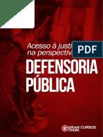 Apostila - Acesso à Justiça Na Perspectiva Da Defensoria Pública
