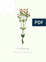 ADailySomething botanicals 9-12_8x10-4