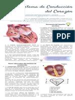 SISTEMA DE CONDUCCIÓN.pdf