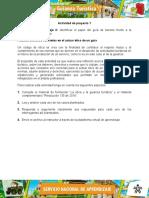 Evidencia_5_Estudio_caso_Plasmar_acciones_concretas (2).docx