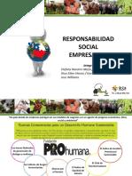 Resposabilidad Social Empresarial - Chile