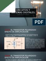 Circuitos y sistemas digitales