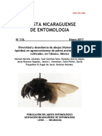 Diversidad_y_abundancia_de_abejas_Hymeno.pdf