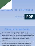 trabalho de liquidos 1 (1).pptx