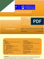 Campo-de-conoc-ingles PRIMARIO.pdf