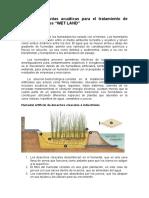 El-uso-de-plantas-acuáticas-para-el-tratamiento-de-aguas-residuales